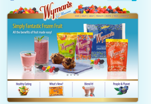 The Wyman's of Maine website project involved completely reimagining their content, positioning the company as the frozen fruit specialists with a corner on healthy eating.